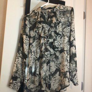 Shear long sleeve blouse